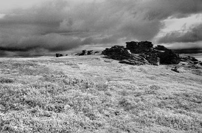 Перевал Дятлова. Фото предоставила О.Львова